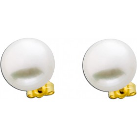Perlenohrringe - Ohrstecker Gelbgold 585